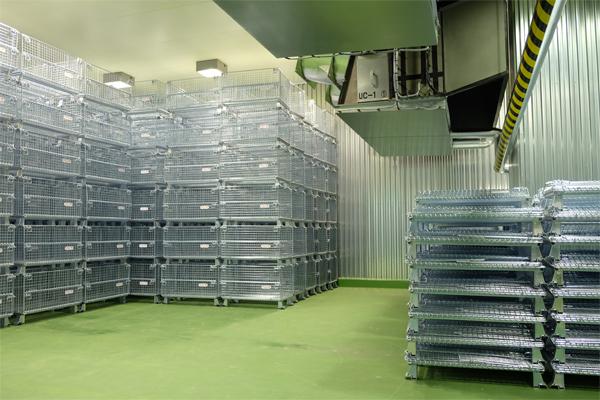 超低温冷凍庫
