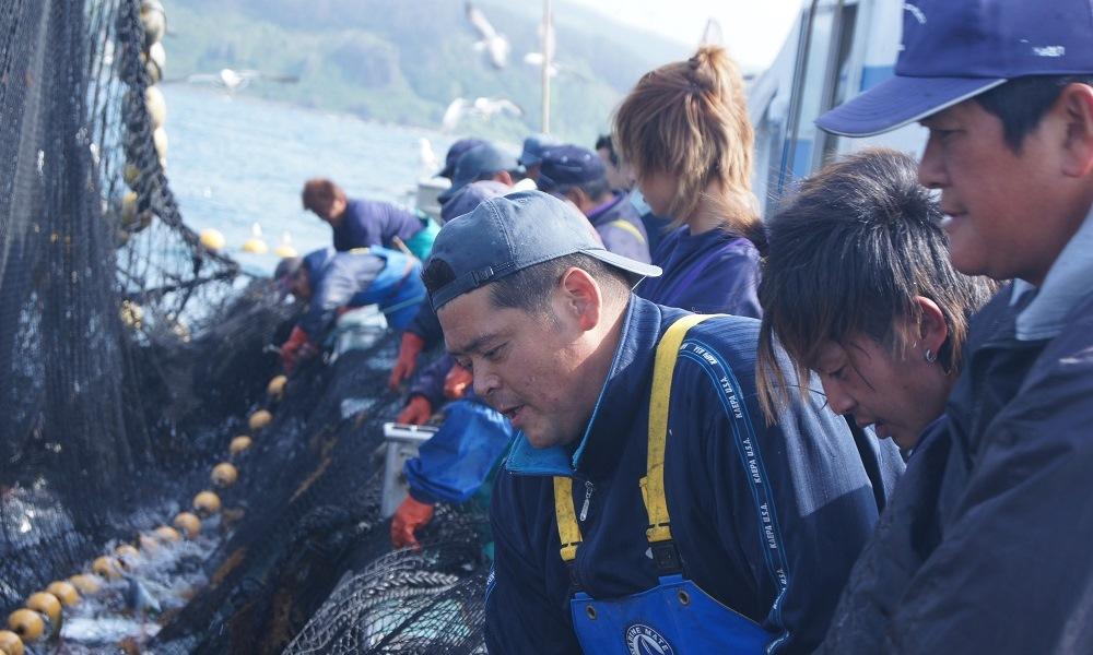 漁業体験01