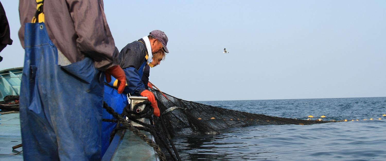 あおもり海山 漁業体験