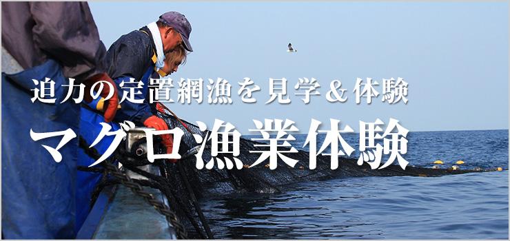あおもり海山のマグロ漁業体験